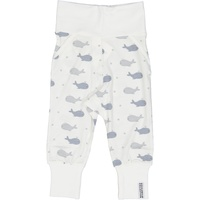 Pant Whale Grey